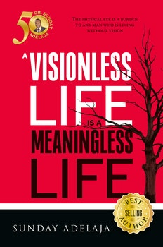 A Visionless Life is a Meaningless Life