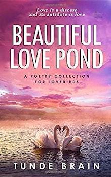 Beautiful Love Pond