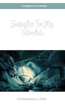 Insight to my World