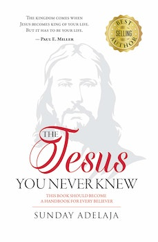 The Jesus You Never Knew