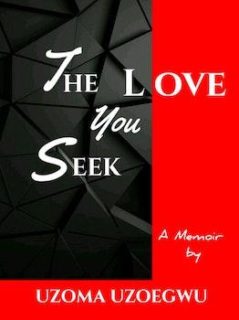 The Love You Seek