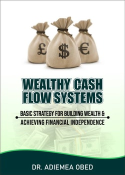 Wealthy Cash Flow Systems
