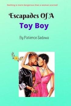 Escapades of a Toy Boy